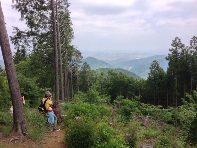 高尾山を満喫しました(週刊 東京散歩ぽ6/3)