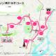 東京オリンピックのマラソンコース・競歩コースが決定